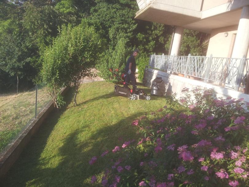 Giardinaggio Macerata, Giardiniere Macerata, Manutenzione del verde macerata, Potatura alberi Macerata