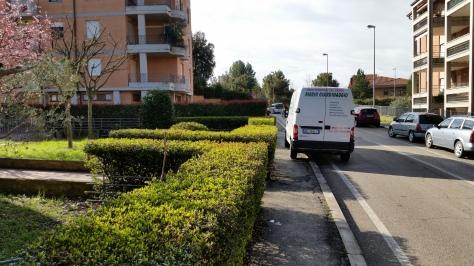 Manutenzione del verde Macerata, Giardinaggio a Macerata