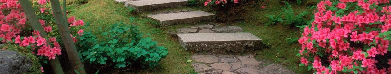 Giardiniere Giardinaggio Macerata (MC)