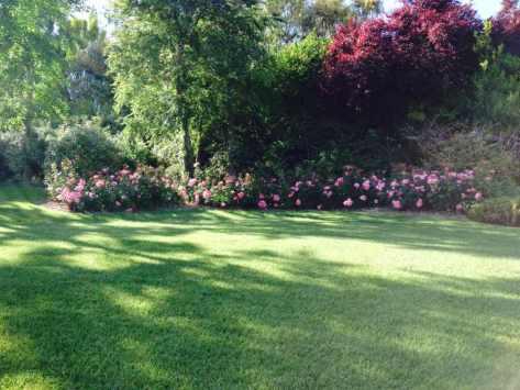Giardiniere Giardinaggio Macerata