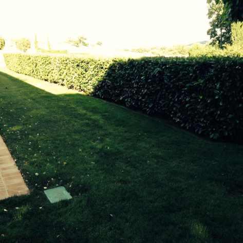 Giardiniere Macerata Giardinaggio  (Prato a Rotoli)