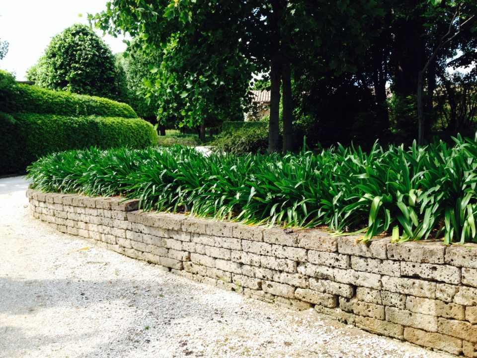 Nostri lavori giardinaggio macerata giardiniere - Alberi condominiali in giardini privati ...