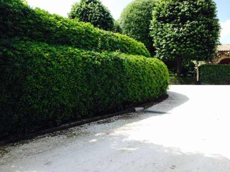 Giardiniere Macerata Giardinaggio
