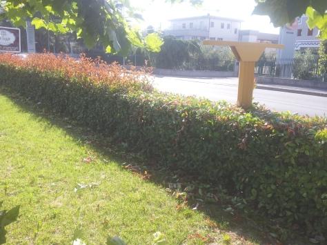 Giardiniere Macerata