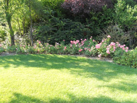 Giardiniere a Macerata, Giardinaggio  a Macerata