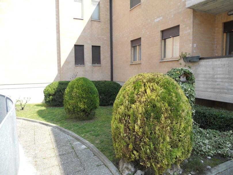 Giardinaggio a Sforzacosta, Giardiniere a Sforzacosta