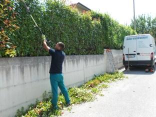 Taglio siepi Macerata, Giardiniere a Macerata